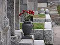 Foto Servicio básico 2 entierro
