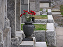 Foto Servicio lujo entierro